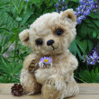 Teddy bear Lucky — Stock Photo