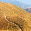 Stock Photo: Twisting mountain path