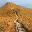 Foto de Stock  : Mountain path