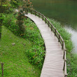 Wood bridge for hiking — Stock Photo