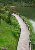 Wood bridge for hiking — Stockfoto