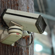 Foto de Stock  : Surveillance camera
