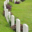 Stock Photo: Rows of headstone at military memorial