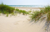Sandy dunes on a beach of Jurmala. — Stock Photo