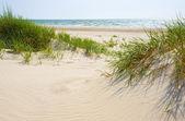 Sandy dunes on a beach of Jurmala. — Stock Photo