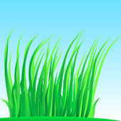 Brizna de hierba exuberante. — Vector de stock
