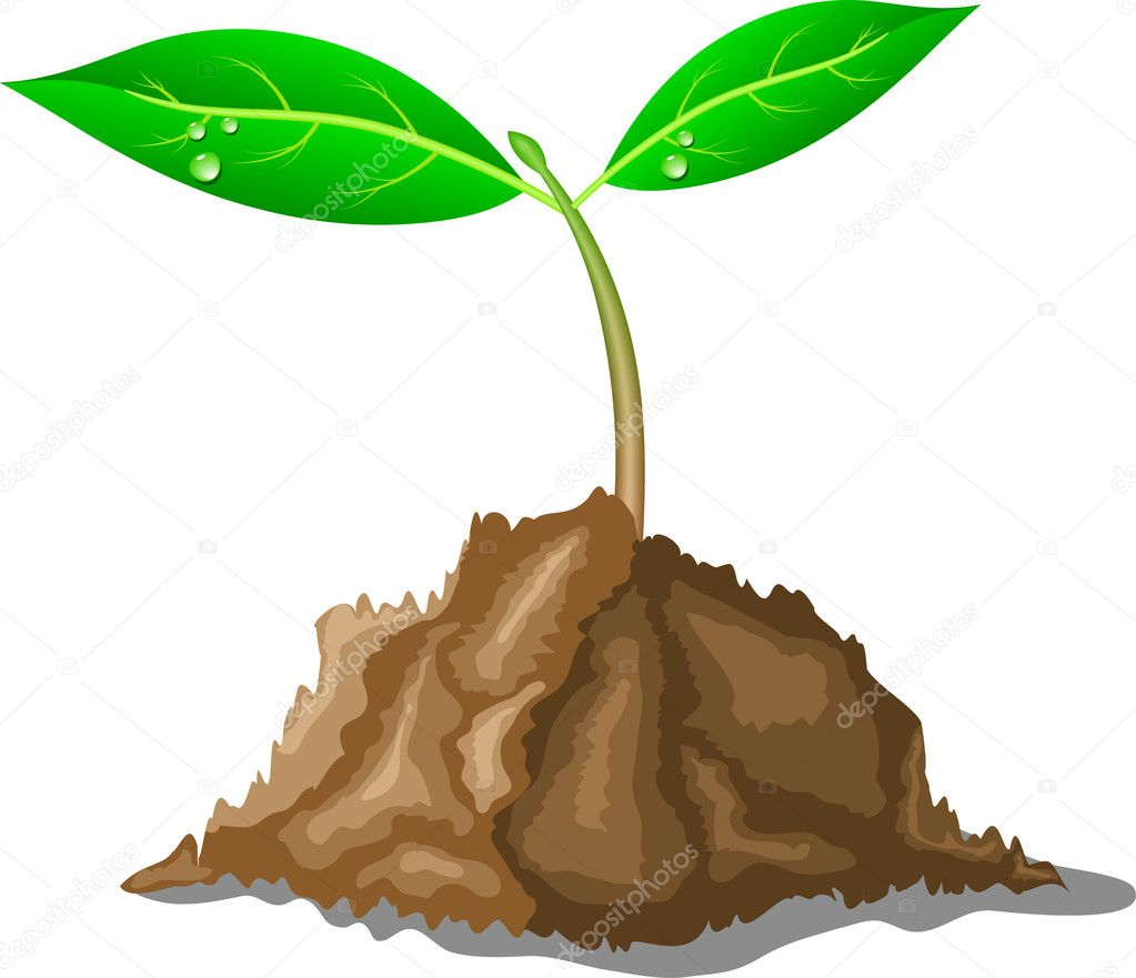 Young sprout in ground. Vector illustration. — Stock Vector #6215096