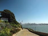 Western Gulls on path down to the coast of Alcatraz — Stock Photo