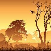 Meadow Landscape — Stock Vector