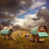 Gypsy Wagons, Caravans — Stock Photo