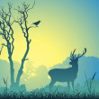 Male Stag Deer — Stock Vector #6604020