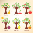Different trees and fruits. — Vektorgrafik