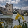 Avignon's bridge - Stock Photo