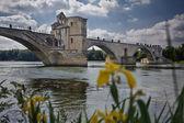 Avignon's bridge — Stock Photo