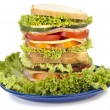 Royalty-Free Stock Photo: Sandwich