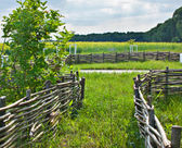 Wicker fence — Stock Photo
