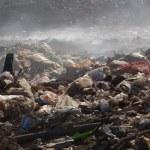 Постер, плакат: Garbage dump