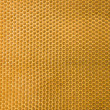 Honeycomb texture - Stock Photo