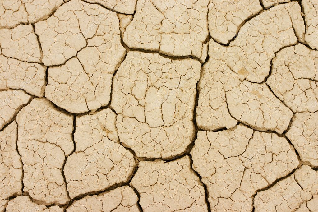 Photo took to the ground in a dry terrain. The land is cracked due the lack of water. — Stock Photo #6589396