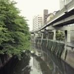 Edogawa, Tokyo — Stock Photo #6437579