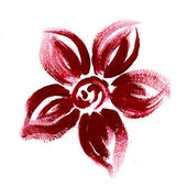 Red flower drawing on white — Stock Photo
