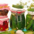 Jars of homemade vegetable preserves — Stock Photo #6109491