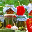 Jars of vegetable preserves in the garden — Stock Photo