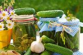Frascos de pepinos en vinagre en el jardín — Foto de Stock