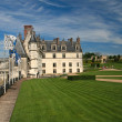 The chateau of Amboise in the Loire valley - Stock Photo