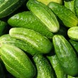 Cucumbers — Stock Photo #5624073