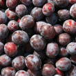 Close-ups of fresh plums. — Stock Photo
