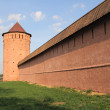 Monastery of Saint Euthymius. Tower and wall, Russia — Stockfoto