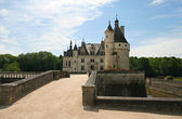 The Chateau de Chenonceau. Loire Valley — Stok fotoğraf
