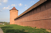 Monastery of Saint Euthymius. Tower and wall, Russia — Stock Photo