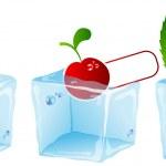 Ice cube set — Stock Vector