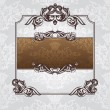 Royal ornate vintage frame — Stock Vector