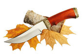 The hunting knife on maple leaves — Stock Photo