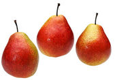 Three pears on a white background — Stock Photo