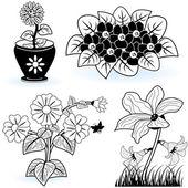 Coleção de flores 6 — Vetorial Stock
