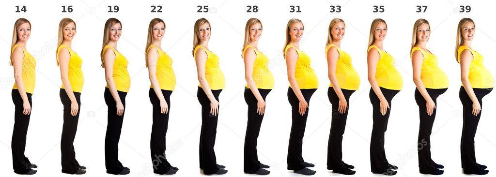 Какого размера живот у беременной 100