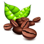 Coffee beans and leaves — Stock Vector