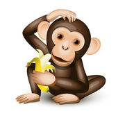 Little monkey — Stock Vector