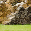 Woodpile — Stock Photo #6319854