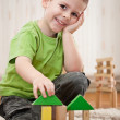 Boy playing with blocks — Foto de stock #5894527