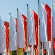 Polish flags — Stock Photo