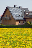 Home with solar panels and yellow dandelion — Stock Photo