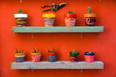 Shelf full of cacti — Stock Photo