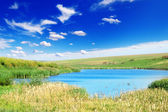 Lake and green field — Stock Photo