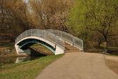 A small footbridge at the park Sviblovo — Stock Photo