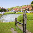Aldbury village green stocks and pond — Stock Photo